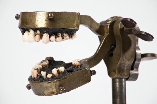 manequim-odontologia-10