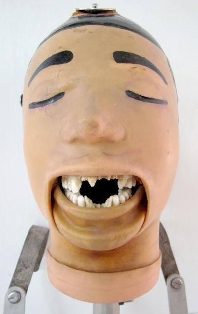 manequim-odontologia-11