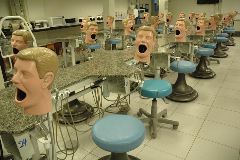 manequim-odontologia-23