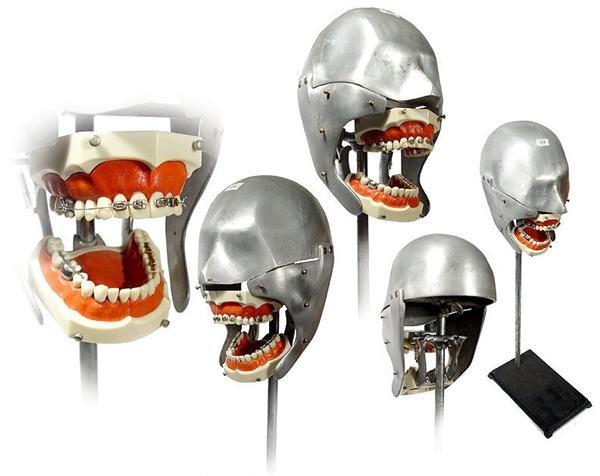 manequim-odontologia-8